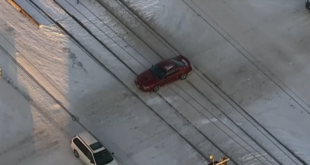 Mustang Seconds Away From Train Crash. What Bystanders Did Will Restore Your Faith In Humanity